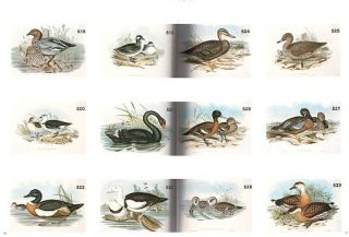 The John Gould Collection from his personal library.