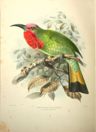 A monograph of the Meropidae, or family of the Bee-eaters.