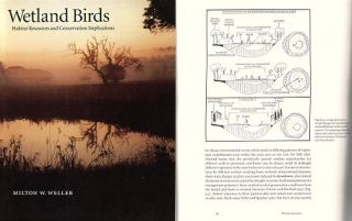 Wetland birds: habitat, resources and conservation implications. Milton W. Weller