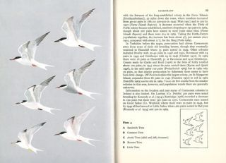 The seabirds of Britain and Ireland.