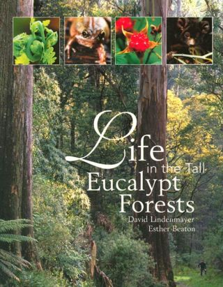 Life in the tall eucalypt forests. David Lindenmayer
