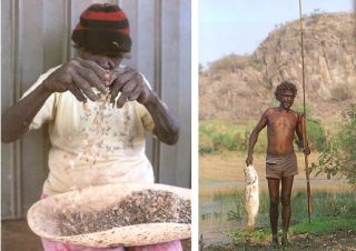 Bush food: Aboriginal food and herbal medicine.