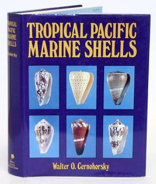 Tropical Pacific marine shells