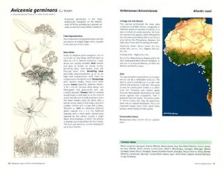 New York city trees: a field guide for the metropolitan area.