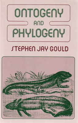 Ontogeny and phylogeny. Stephen Jay Gould