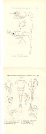 The development of Rhincalanus [and] Larvae of decapod crustacea [and others].