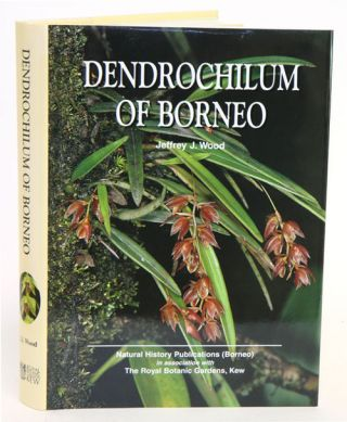 Dendrochilum of Borneo. Jeffrey Wood, J