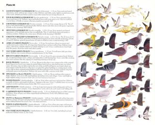 Illustrated checklist: birds of western and central Africa.