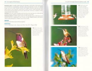Hummingbirds of North America: the photographic guide.
