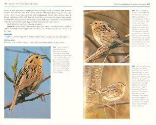 Sparrows of the United States and Canada: the photographic guide.