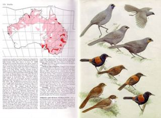 Handbook of Australian, New Zealand and Antarctic birds: Boatbill to Starlings [HANZAB, volume seven].
