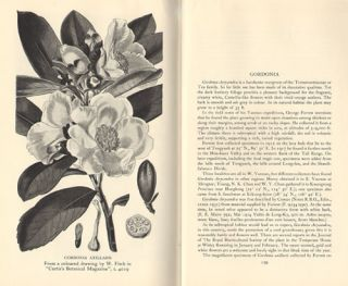 The journeys and plant introductions of George Forrest.
