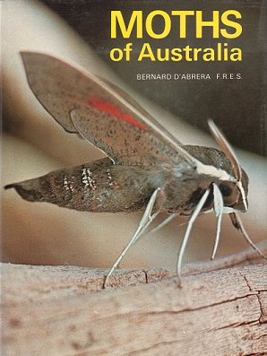 Moths of Australia. Bernard D'Abrera