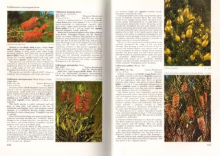 Encyclopaedia of Australian plants suitable for cultivation, volume two.