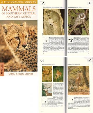 Mammals of southern, central and east Africa: a photographic guide.