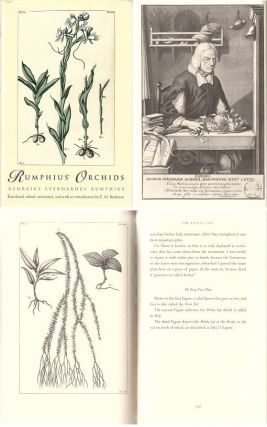 Rumphius' orchids: orchid texts from The Ambonese Herbal. Georgius Everhardus Rumphius