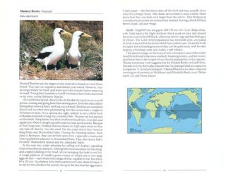 Birds of Lord Howe Island: past and present.