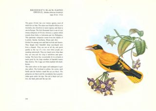 Birds of Asia: illustrations from the lithographs of John Gould.