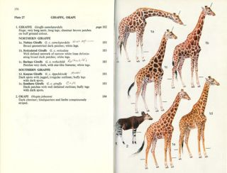 A field guide to the larger mammals of Africa.