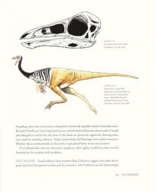 Dinosaurs and other mesozoic reptiles of California.