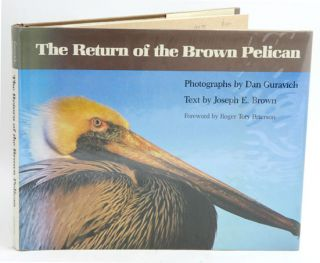 The return of the brown pelican. Joseph E. Brown.