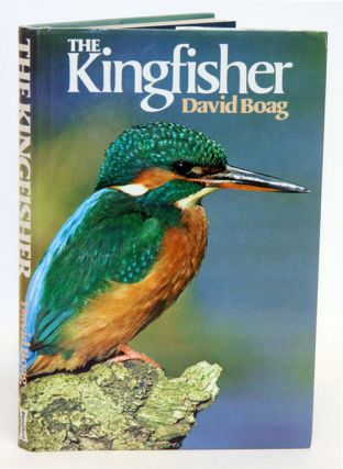 The Kingfisher. David Boag