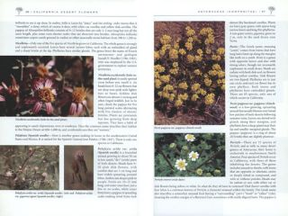 California desert flowers: an introduction to families, genera and species.