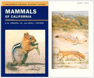 Mammals of California. E. W. Jr. Jameson, Hans J. Peeters.