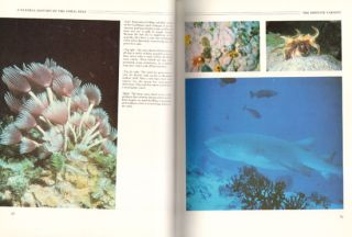 A natural history of the coral reef.