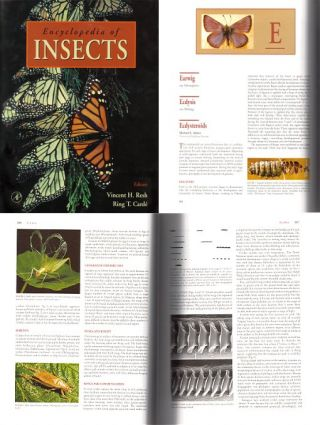 Encyclopedia of insects.