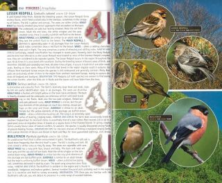 Complete British birds: photoguide.