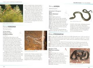 A field guide to reptiles of Queensland.
