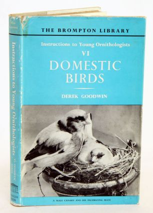 Instructions to young ornithologists, part six: domestic birds. Derek Goodwin.