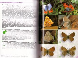 Field Guide to Butterflies of South Africa.
