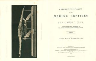 A descriptive catalogue of the marine reptiles of the Oxford Clay. Based on the Leeds collection ...