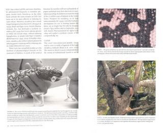 Biology of Gila monsters and Beaded lizards.