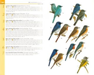 Field guide to the birds of southern India.