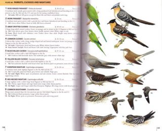 Field guide to the birds of the Atlantic Islands: Canary Islands, Madeira, Azores, Cape Verde.