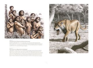 Evolving Eden: an illustrated guide to the evolution of the African large mammal fauna.