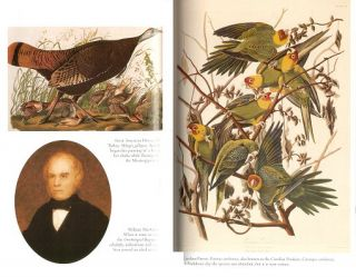 Audubon's elephant: the story of John James Audubon's epic struggle to publish The Birds of America.