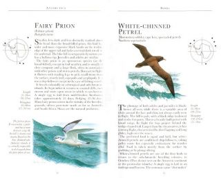 Antarctica: a guide to the wildlife.