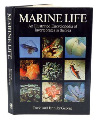 Marine life: an illustrated encyclopedia of invertebrates in the sea. J. David George, Jennifer...