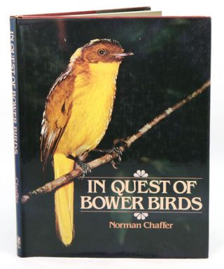 In quest of bower birds. Norman Chaffer