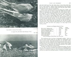 Sea-birds: an introduction to the natural history of the sea-birds of the North Atlantic.