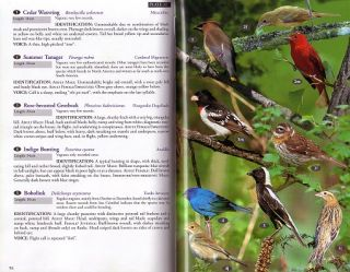 Birds, mammals and reptiles of the Galapagos Islands: an identification guide.