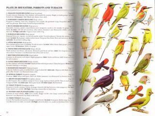 Birds of the Gambia and Senegal.