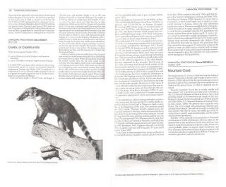Walker's carnivores of the world.
