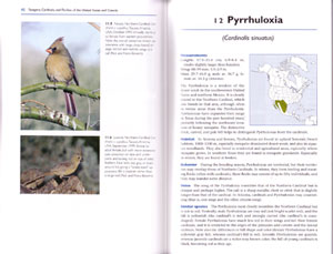 Tanagers, Cardinals, and Finches of the United States and Canada: the photographic guide.