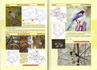 Atlas: Birds of Moscow city and the Moscow region.