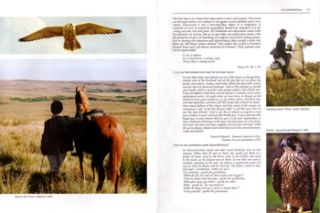 Classical falconry: a treatise on rook and crow hawking.